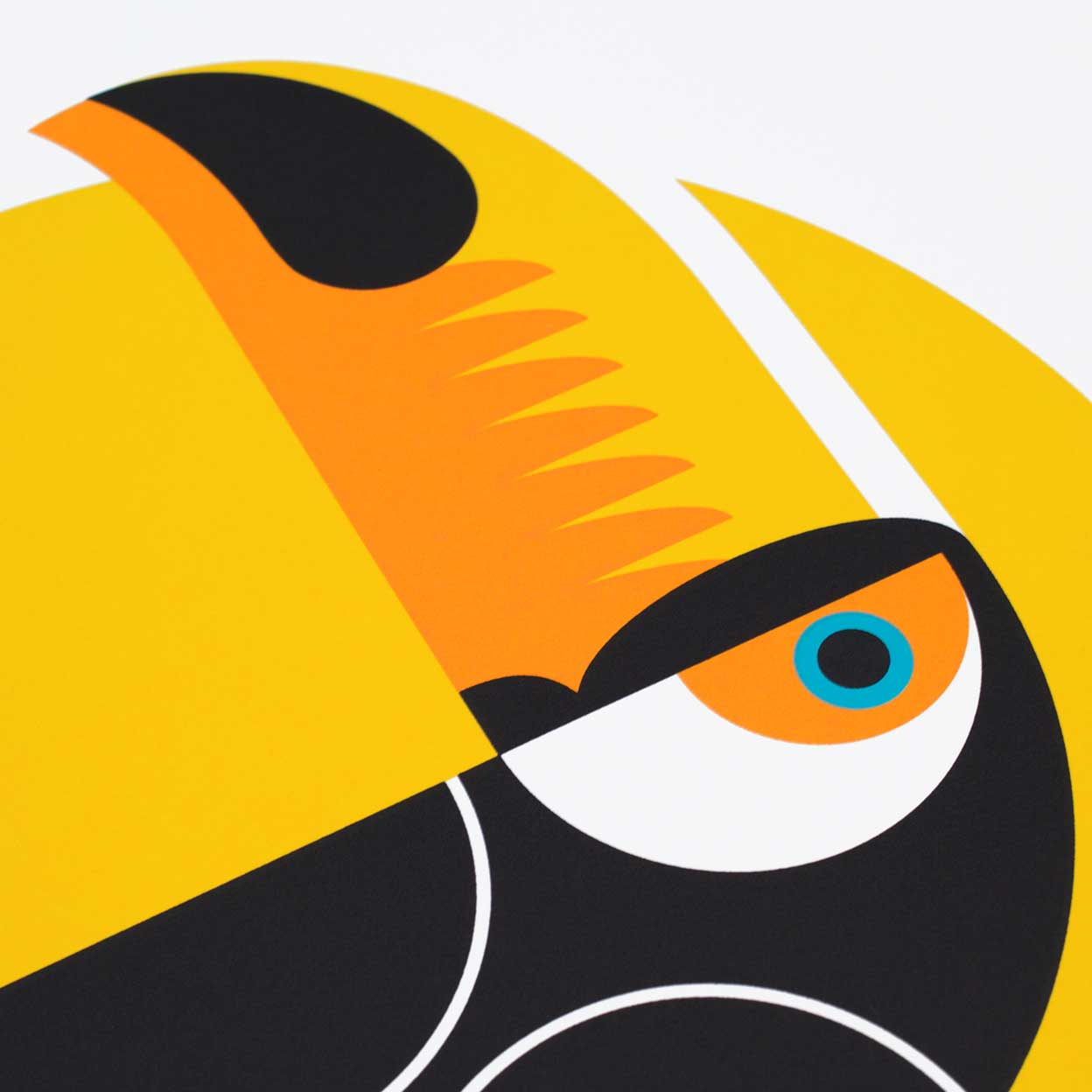 Toucan Screen Screen Print by Dan Forster created for The Lost Fox